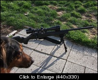 varmint gun version 2.jpg